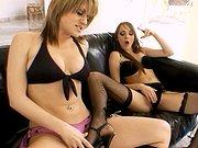 Elles se chauffent sur le canapé du salon